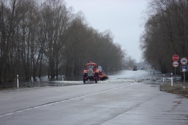 Šaktarpio šventė: automobilių eilės Rusnėje