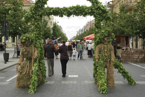 Vilniaus širdyje - žolynų kvapas