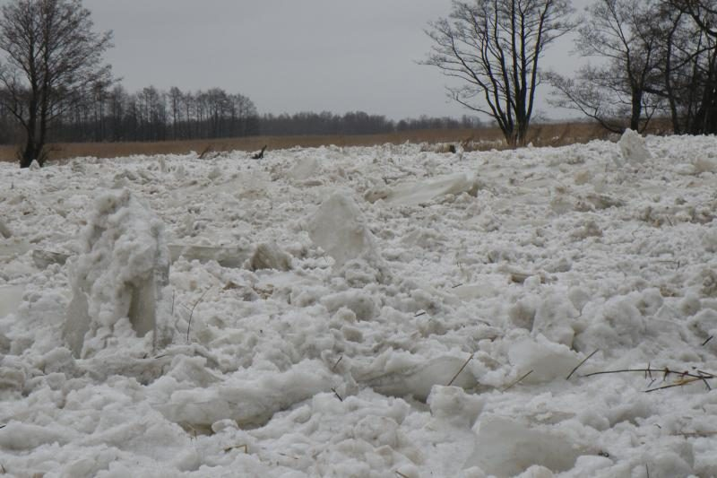 Šilutės rajone dėl potvynio paskelbta ekstremali situacija (papildyta)