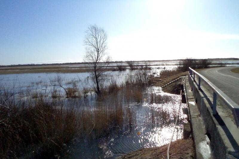 Pamaryje pasirodė pirmieji potvynio ženklai