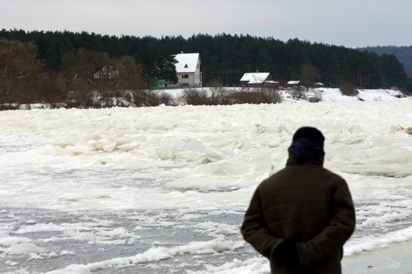 Kauno rajone, Neryje, susidarė ledų sangrūda (papildyta)