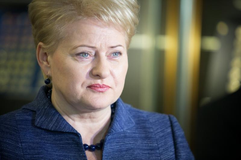 D.Grybauskaitė: ES suinteresuota atviros ir laisvos prekybos su Lotynų Amerika skatinimu