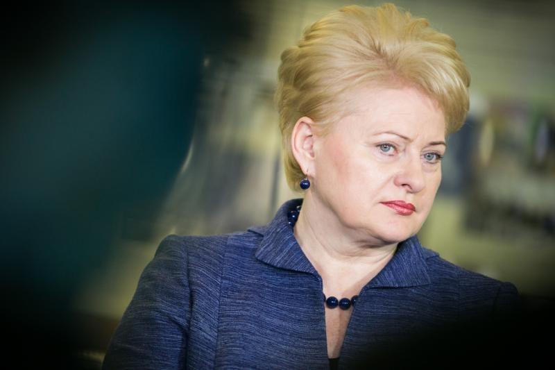 D. Grybauskaitė: nežinoti, kokių resursų turime, yra didžiulė klaida