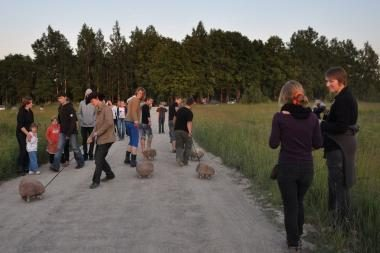 Vakarų Lietuvą apglėbs TATA festivalis (papildyta)