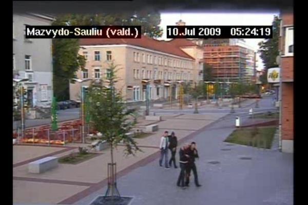Klaipėdos policija ieško berniuko skulptūros niokotojų