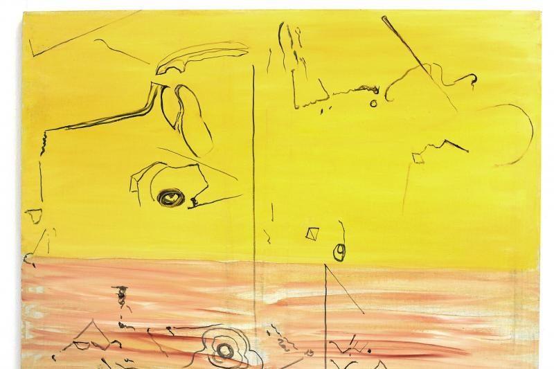 Metafizinė dailinininkės A.Andziulytės upė