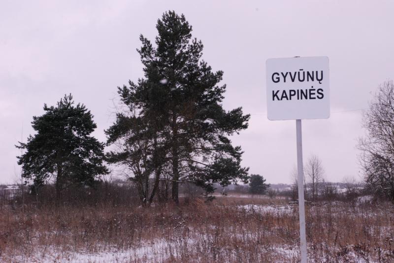 Oficialios Vilniaus miesto gyvūnų kapinės kol kas tuščios