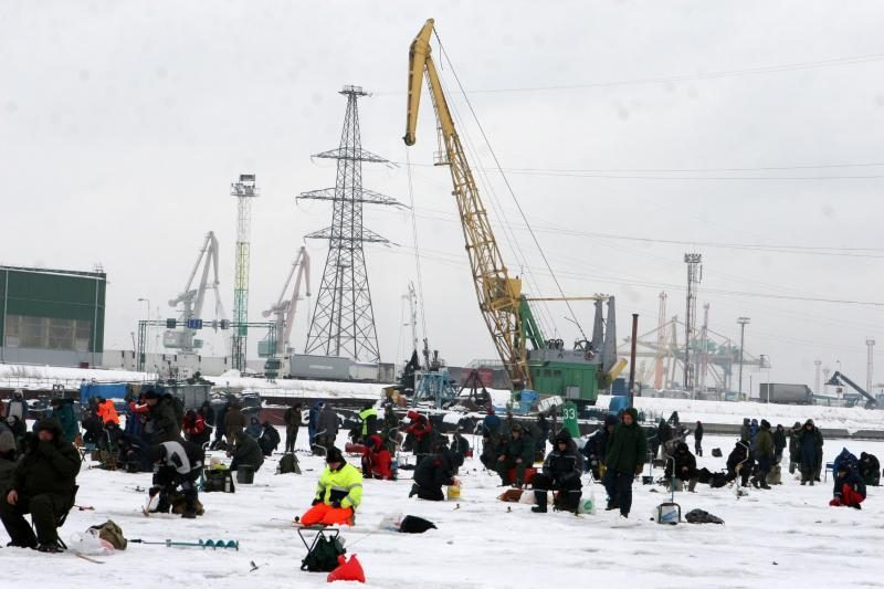 Stintos ant Kuršių marių ledo priviliojo tūkstančius žvejų
