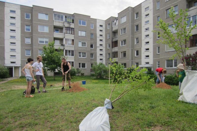 Pilaitės bendruomenė vilniečių daugiabučių kiemuose pasodino 50 medžių