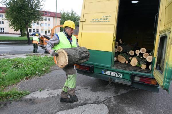 Audra pajūryje vertė medžius ir plovė pliažus (papildyta)