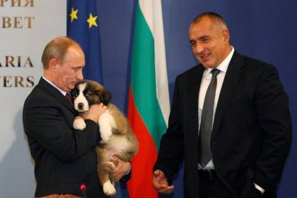 Visa Rusija kviečiama išrinkti vardą naujajam premjero V.Putino šuneliui