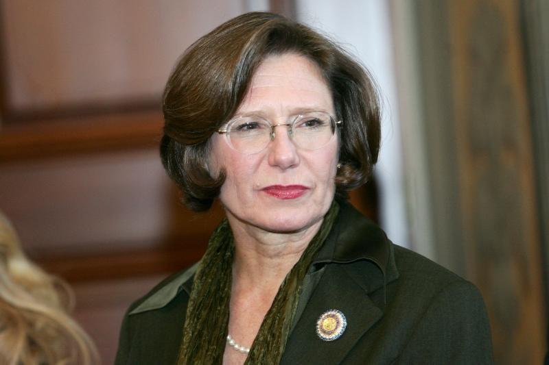 JAV ambasadorė: pamatinės žmogaus teisės nėra apsaugotos