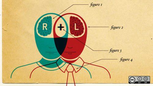 Smegenys: kūrybingumui dešinysis pusrutulis, logikai - kairysis?