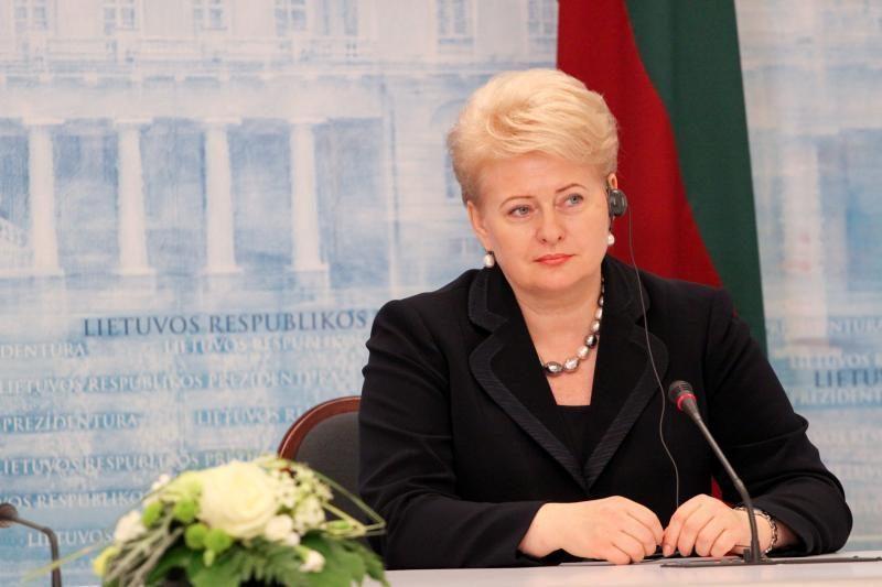 D.Grybauskaitė teigia nesant neigiamų faktų dėl naujojo FNTT vadovo