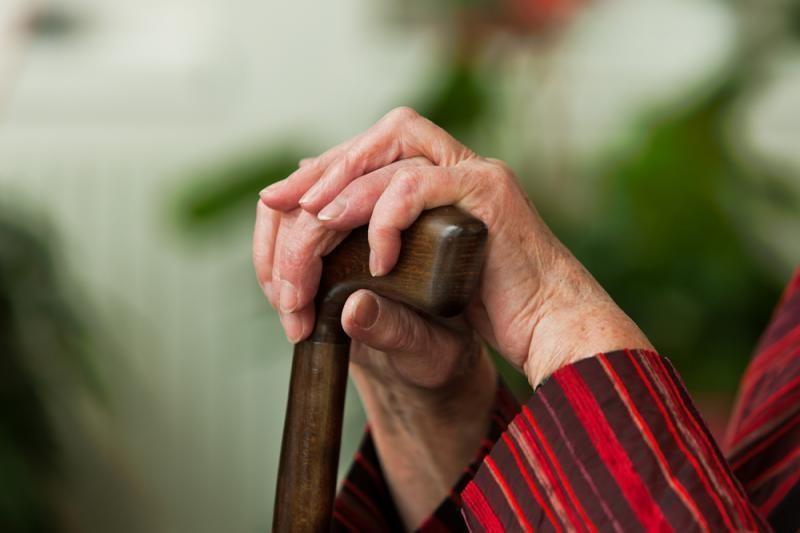 Joniškyje vaikinai sučiupo senutės plėšiką