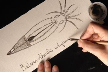 Piešinys nupieštas naudojant 150 mln. metų senumo rašalą