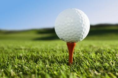 Šuo prarijo devynis golfo kamuoliukus