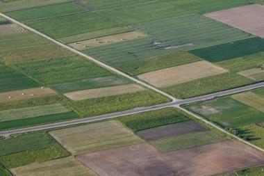 Nacionalinė žemės tarnyba kitąmet už parduotą valstybinę žemę tikisi gauti 120 mln. litų