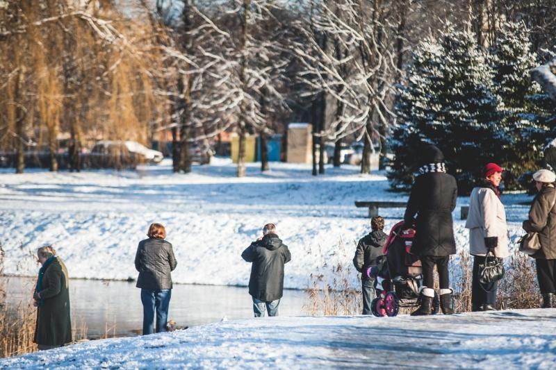 Kalniečių parke nutrijos paliktos ant ledo