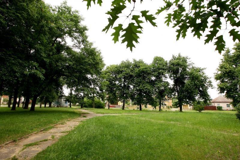 Žaliakalnio skverui – dailininko A.Samulevičiaus-Samuolio vardas