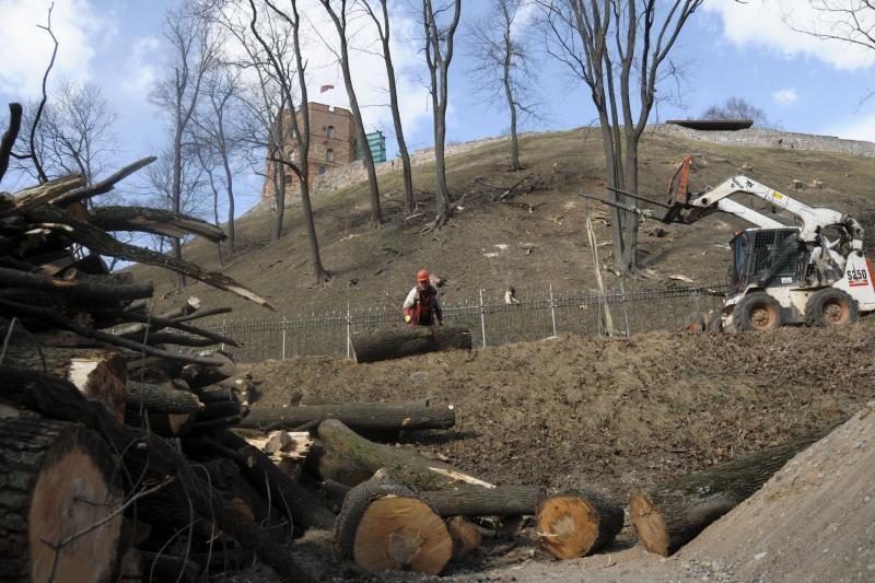 Ant Gedimino kalno darbuojasi medkirčiai