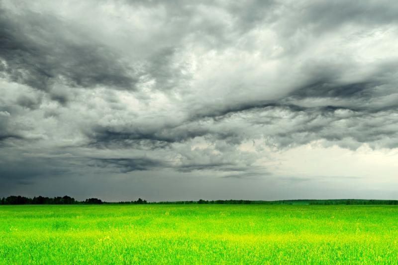 Kitos savaitės pradžioje vietomis galimi trumpi lietūs, išliks šilta