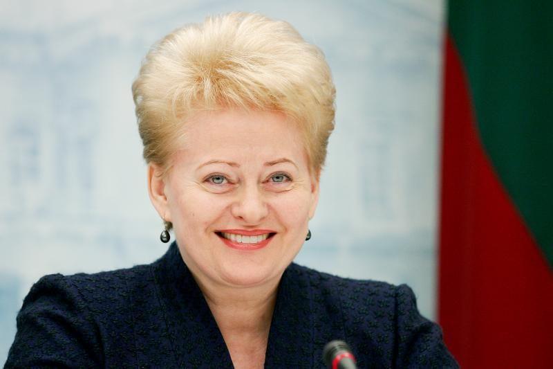 D.Grybauskaitė Brazilijoje dalyvaus darnaus vystymosi konferencijoje