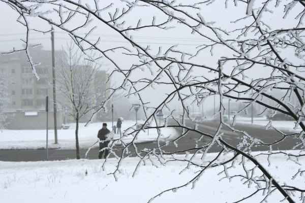 Orai Kaune: artimiausiomis paromis bus šalta ir giedra