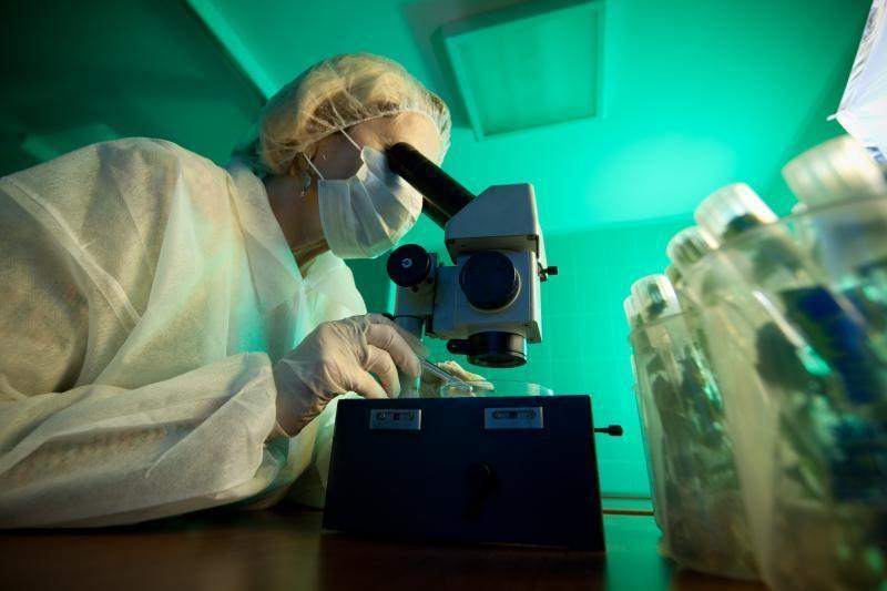 """Ekspertas: dėl """"popierinių"""" chemijos, fizikos egzaminų nukenčia vaikai"""