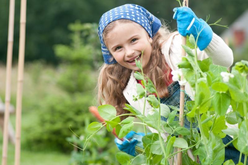 Sodininkų laukia teigiamos  permainos