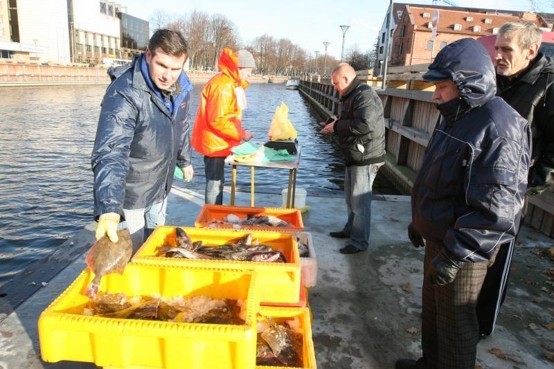 Politikai vėl gaivina prekybą žuvimis Danės upėje