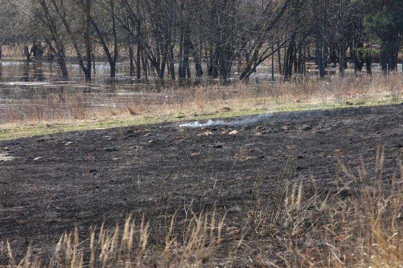 Padegėjai smaginasi: ugniagesiai vos spėja gesinti degančią žolę