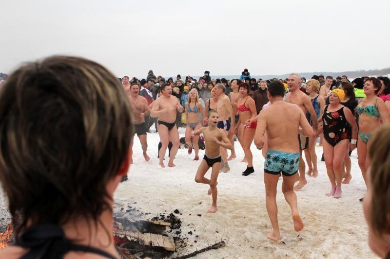 Ruonių maudynės Palangoje sutraukė tūkstančius smalsuolių