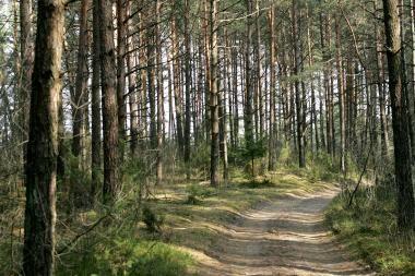 Kretingos rajone rasti 2,5 tūkst. litrų raugo degtinei gaminti