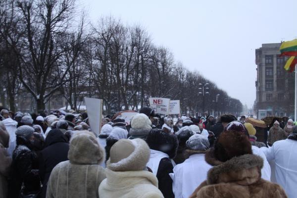 Medikai vėl protestavo prieš ligoninių sujungimą