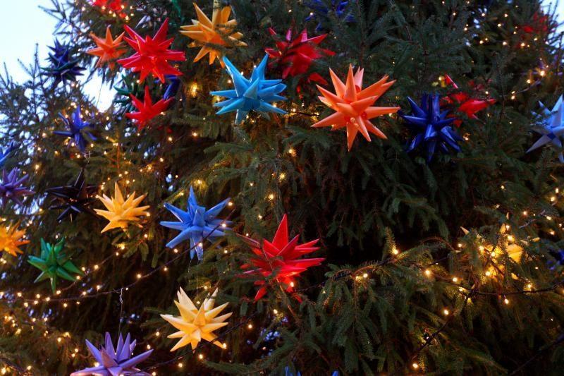 Miestą per Kalėdas papuoš dvi kauniečių dovanotos eglės