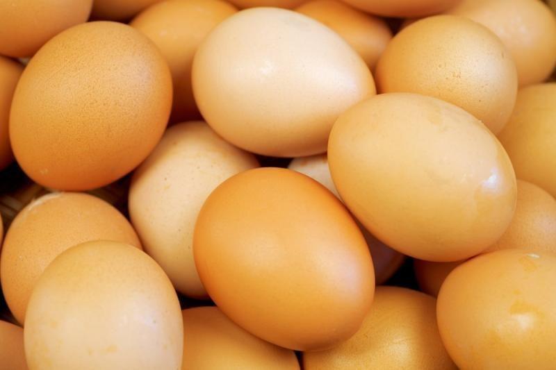 Menininkas iš kiaušinių pagamino šviestuvus