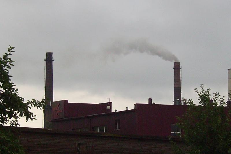 Petrašiūnų elektrinės dūmai baugina gyventojus