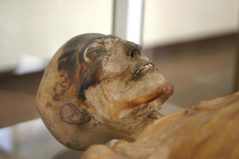 VU mokslininkai kompiuteriniu tomografu tiria Egipto mumijas