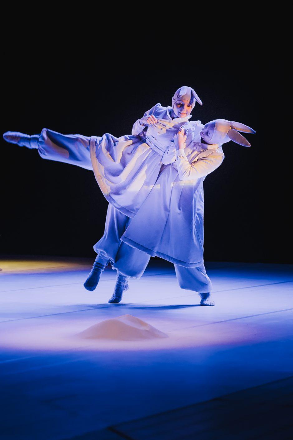 """Savaitgalį – šokio spektaklis """"Baltoji lopšinė"""""""