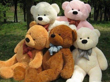 Skelbimas - Dideli meškinai  Teddy bear