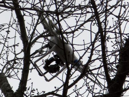 Skelbimas - Dronų iškėlimas