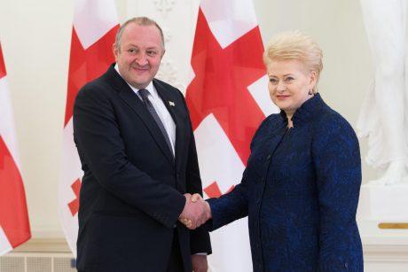 Gruzijos Prezidento vizitas