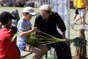 Šventė Juodkrantėje – su rungtimis, muzika ir jomarku