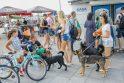 Tarptautinei benamių gyvūnų dienai – simbolinis žygis