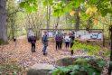 Vilkijos apylinkių miškuose – elnių vestuvių ritualai (vaizdo įrašas)