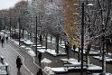 Mieste – naujos kalėdinės puošmenos