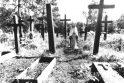 Iškentusios Lietuvos simbolis – Sibiro Madona