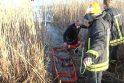 Medikams nepavyko išgelbėti tvenkinyje skendusio berniuko (papildyta)