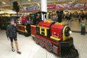 """""""Megoje"""" - traukinuko sutikimo šventė ir Mios koncertas"""